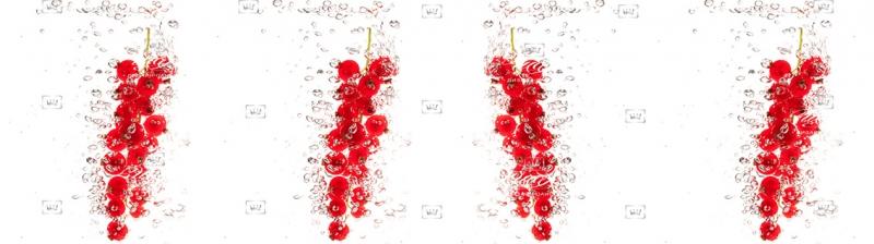 Фартук Скинули ягоды красные