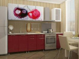 Прямая небольшая кухня с фоторисунком